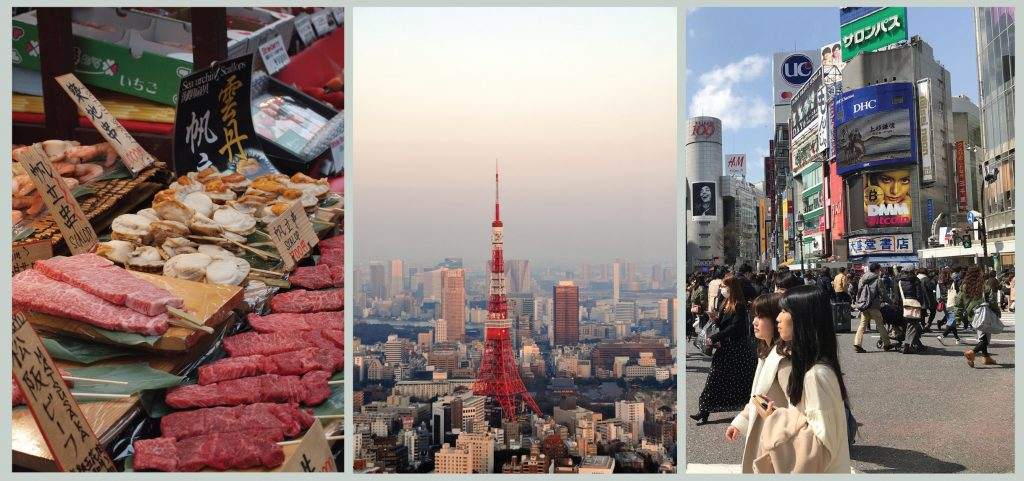 Tokyo Translated Travel Article ANZA Singapore