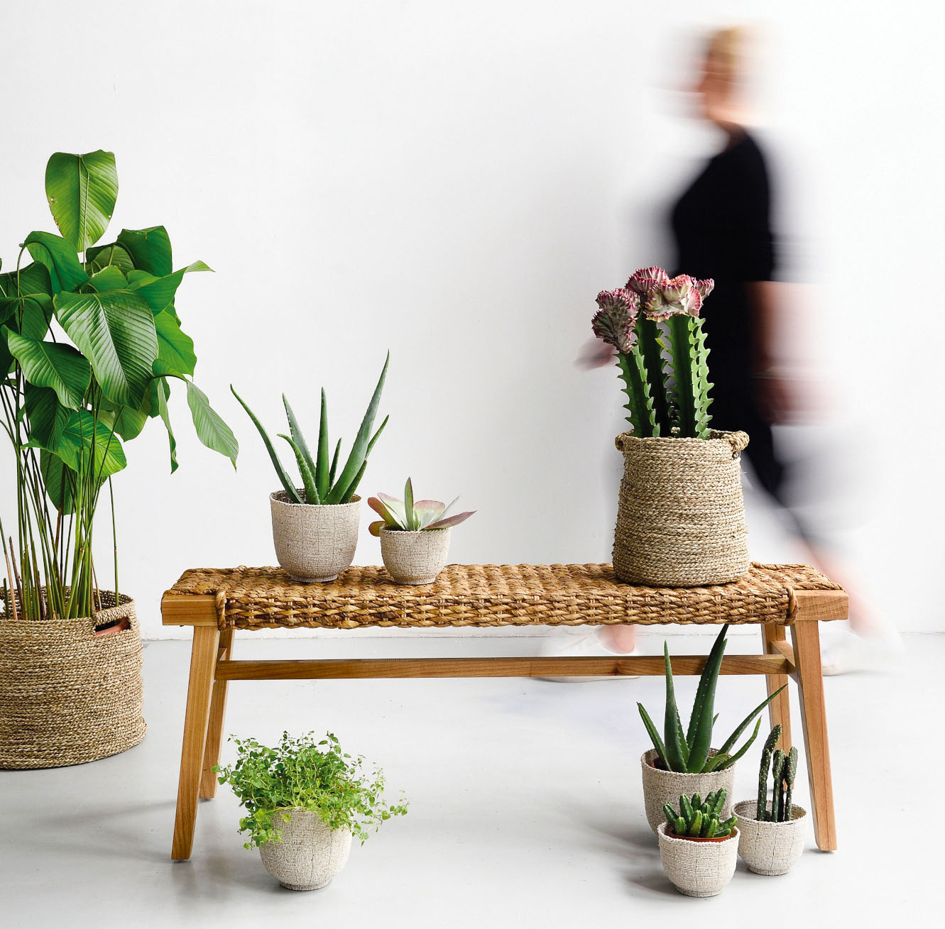 Abaca Bench from Island Living