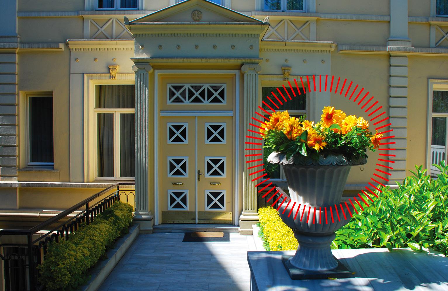 Garden at doorway