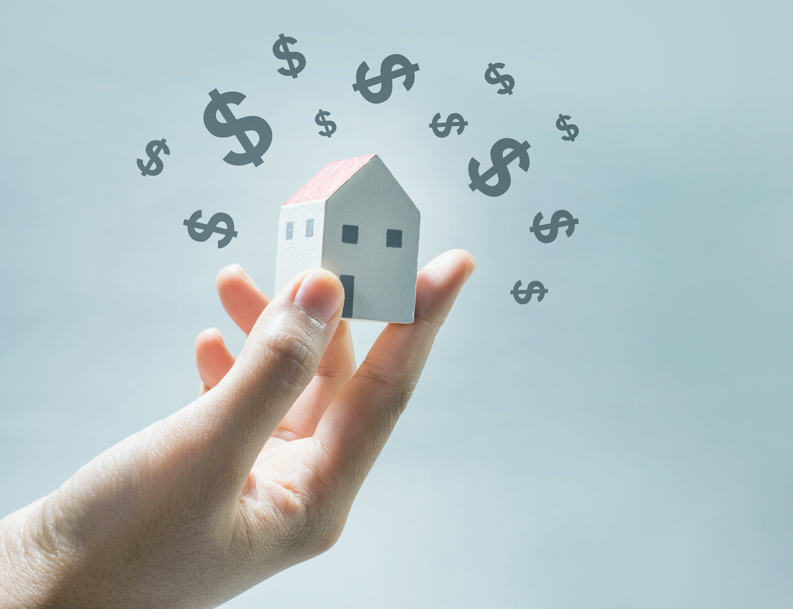 investment and house